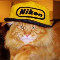 Я люблю Nikon ! ( Эта фотография была опубликована компанией Nikon на своем официальном сайте  ) . :: Игорь Абрамов