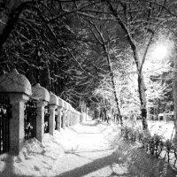 Ночь. Улица. :: Кирилл Ельцов