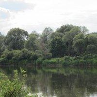 Лето на реке :: Татьяна Ребенок