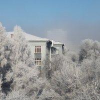 зимний Политех :: Мария Мацкевич