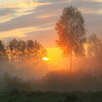 Сергей Нестерчук - Утро в деревне :: Фотоконкурс Epson
