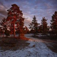 Георгий Головин - Северная ночь :: Фотоконкурс Epson