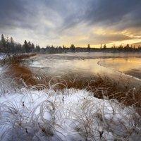 Любовь Трифонова - Запоздалая осень :: Фотоконкурс Epson