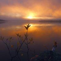 Любовь Трифонова - Утонувшее небо