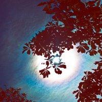 Анастасия Свинцова - Под покровом небес