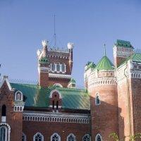 Замок :: Владимир Немцев