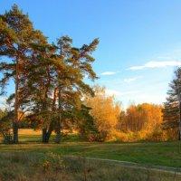 просто осень... :: Павел Преснов