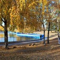 Из Цикла Осень в Одессе :: Вахтанг Хантадзе