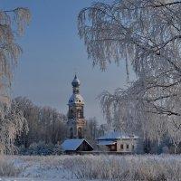 морозный день :: Михаил Карпов