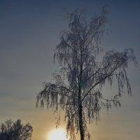 закат :: Михаил Карпов