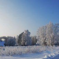 домик в деревне :: Михаил Карпов