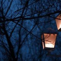 ночь...фонаь.... :: Дмитрий Ломтев
