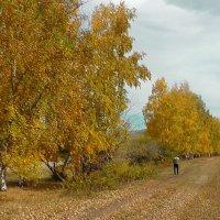 Осень на Аршане :: Елена Ветрова