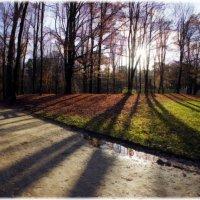 Парк в Брюсселе :: Борис Соловьев
