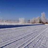 Заснеженная дорога :: Ekaterina Shchurina