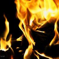 пламя :: Alina Basharova