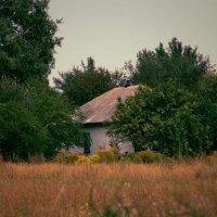 Край села. :: Marina Kutsenko