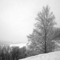 Зимний пейзаж :: Александр Табаков