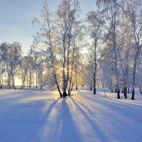 Зима продолжается. :: Николай Мальцев