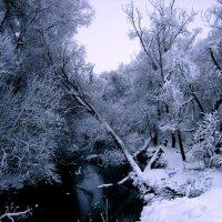 Здесь все словно в сказке,где сказка сама-красавица русская бродит Зима! :: Жанна Савкина