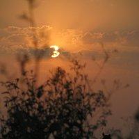 Закат в степи :: Ann _V_