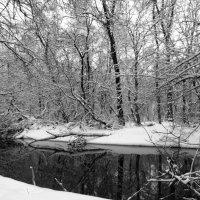 Реченька-река. :: Жанна Савкина