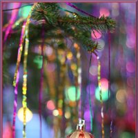 Ну,что за Новый год без елочки.... :: Татьяна Панчешная