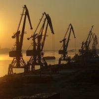 утро в порту :: Евгений Золотухин