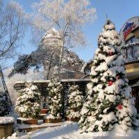 Зимний Светлогорск :: Павел Дунюшкин
