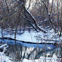 Зимний пейзаж. :: Жанна Савкина