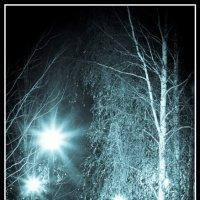 ночь в парке :: Юрий Макаров