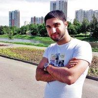 Друг и лето :: Святослав Шахов