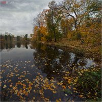 Осень, осень.. :: Виктор Перякин