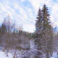 Зимний ручей :: Соня Орешковая (Евгения Муравская)