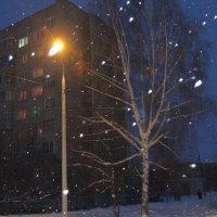 Зимний город :: Елена Винокурова