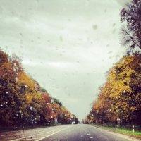 Осень :: Jenny Kiev