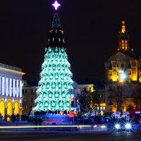 Майдан. Киев :: Виктория Неземная