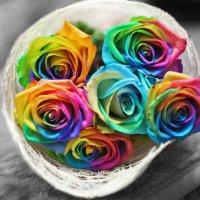 Розы :: Yana Elistratova