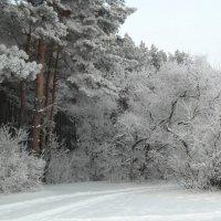 Русская зима :: Сергей Кузнецов