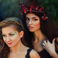 Серия Лесные феи :: Tatiana Treide