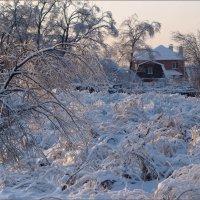 Морозный день :: Виктор Марченко