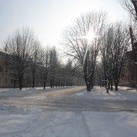 зима 2013 :: filya zub