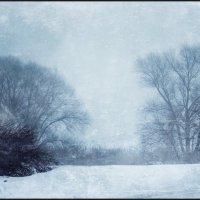 в тумане :: Александра Янголенко