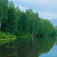 Лесное озеро. :: Игорь Ильиных