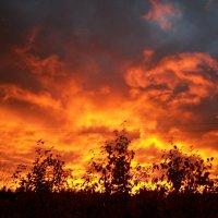 Взгляд с небес :: Виктор Елисеев