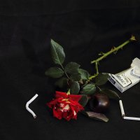 Курящий вдыхает удовольствие, а выдыхает здоровье. :: Юрий Гайворонский