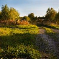 Осенний вечер :: Sergey Apinis