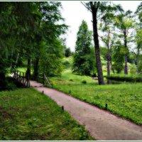 Сказочный лес :: Инна *
