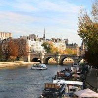 Осенний Париж. :: lady-viola2014 -