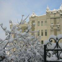 После снегопада :: Anatol Dzhygyr
